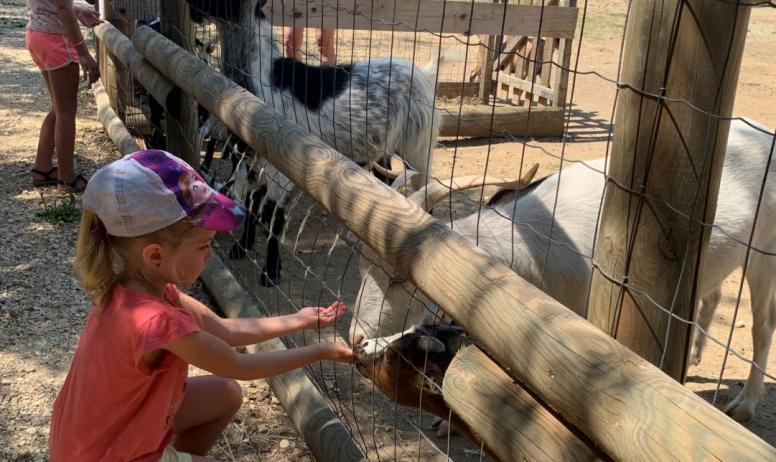 parc animalier Les Gorges de l'Ardèche